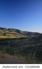 View of the Caucasus Mountains from the Sarykum barkhana with green desert plants and yellow-golden sand to the Caucasus Mountains in mountainous Dagestan in the Caucasus