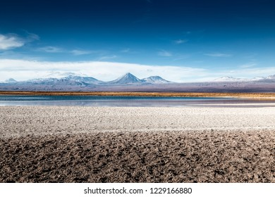 View of Cejar lagoon with Andes mountain range on background. Atacama Desert, Chile.