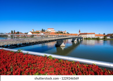 A view of the center of city of Ptuj, church, castle and old historical town of Ptuj, Slovenia. Blue sky, summer day in wine area of Ptuj, Ormoz and Jeruzalem.