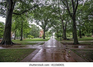 View from center of quad at Old Miss