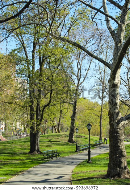 View of Central park at sunny spring day in New York