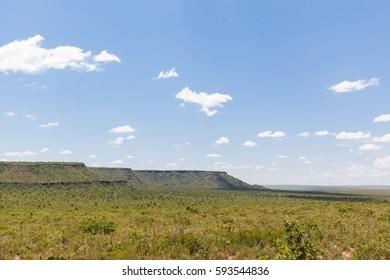 View of cerrado biome - Tocantins - Brazil