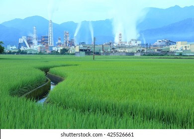 View of a chemical factory with smoking chimneys in the middle of a green rice field in the early morning ~ Factory pipes polluting air on a silent morning, a serious environmental issue