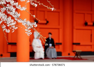 View of cherry blossoms (Sakura) with a background of a newlywed couple, the bride dressed in Pure White Shiromuku sitting by the bridegroom, before the red gate in Sanjusangendo Temple in Kyoto Japan