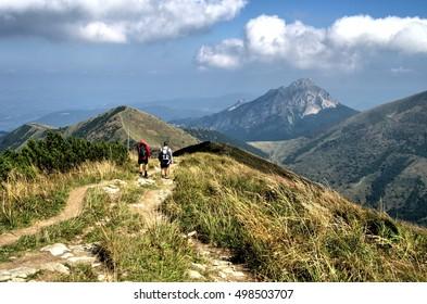 View from Chleb mountain, Velky Rozsutec mountain  Slovakia, Europe - beautiful scenery