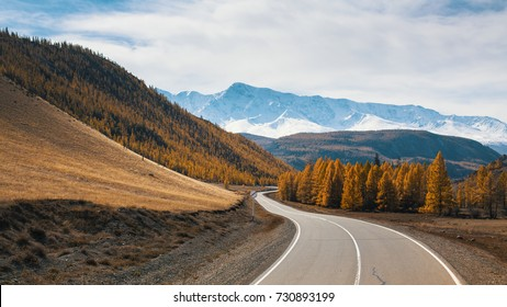 View of Chuya Highway and yellow autumn forest on a background of the mountain North-Chuya ridge of Altai Republic, Russia.