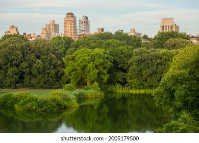 View to the city of New York from Central Park.
