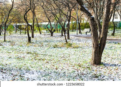 view of city park covered with the first snow in frosty autumn day