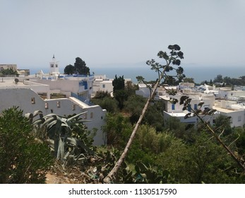 view of the city sidi bou said in Tunis, landscape and medieval white houses