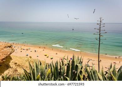 View from the cliffs to busy beach Praia do Porto de Mos near Ponta da Piedade, Lagos Algarve Portugal