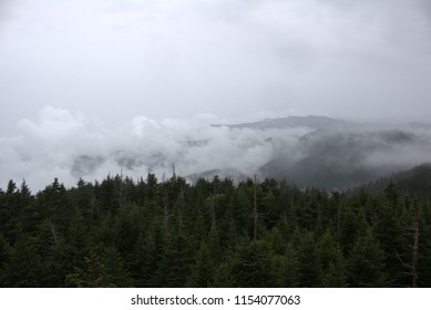View of the cloud levels as we walked the trail up Clingmans Dome in Tennessee; deciduous trees