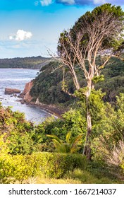 A view of the coast from the cliffs in Calibishie, Dominica