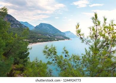 View of the coast of Turkey near Antalya through pine needles. Antalya is on the horizon