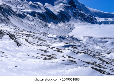 View to Colimbia Icefield in March, Jasper National Park, Alberta, Canada