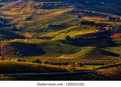 View of colorful autumnal vineyards on the hills of Langhe at sunset in Piedmont, Northern Italy.