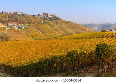 View of colorful autumnal vineyards on the hills of Langhe in Piedmont, Northern Italy.