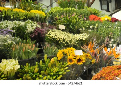 View of colorful flowers in a kiosk.