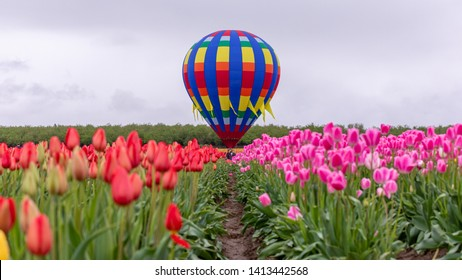View at a colorful hot air balloon though the row of red tulips. Distant indistinguishable people in line to board it for a rideю