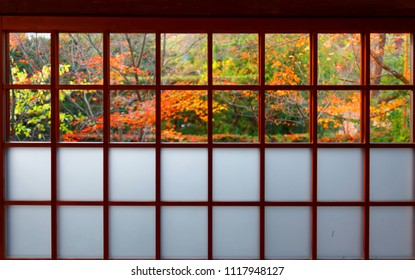 View of colorful maple trees in the courtyard garden behind the sliding screen door ( Shoji ) of a traditional Japanese room in Genko-an, a Buddhist Temple famous for autumn foliage in Kyoto, Japan
