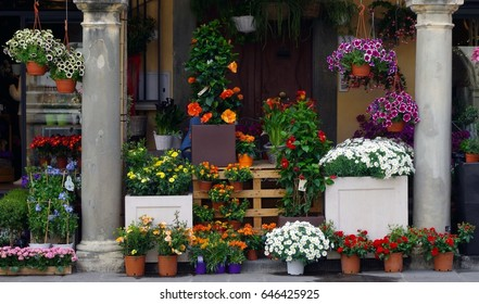 View of colorful potted flowers by building at town square in Tuscany, Italy.