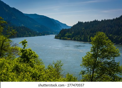 View of the Columbia River, in Cascade Locks, Oregon.