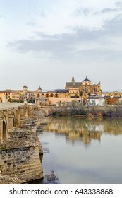 view of Cordoba with Mosque Cathedral from Guadalquivir river, Spain