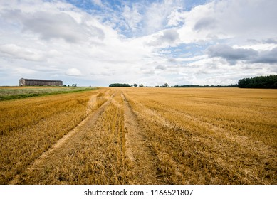 A view of the country agricultural field on a sunny summer day, dark blue sky with lots of clouds, Latvia