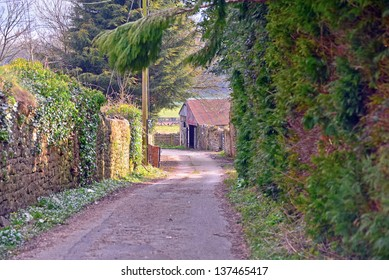 A view of a country lane in Wales.