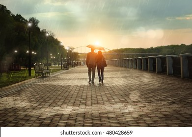 View of couple a back under umbrella walking down the rainy park in autumn evening. Bright sunset.