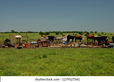 A view from a cow pasture after a tornado destroyed a small mobile home.