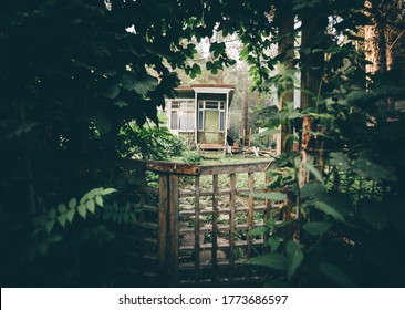 View of a cozy cryptic wooden wicket in a deforused foreground in a tunnel of plants and greenery with a small countryside summer dacha house door visible aloof at the distance in a woods