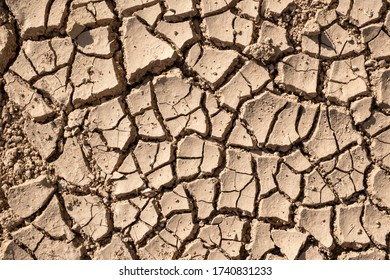 View of cracked soil from drought as background.