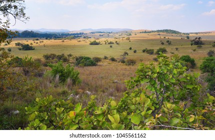 View of Cradle of humankind,South Africa landscape