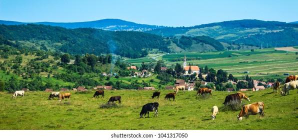 View of Crit village in Transylvania