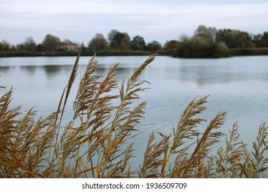 View of the Curiel lakes of Campogalliano, Modena, Emilia Romagna, Italy