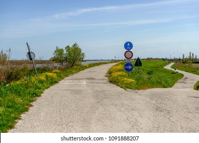 view of  the cycle lane on Po river right bank, shot in bright spring sun light at Goro, Ferrara,  Italy