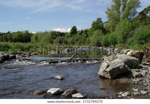 View of the Dargle River in County Wicklow, Ireland. Trees around the river. Irish nature landscape.