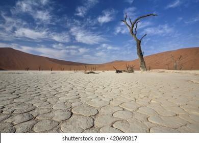 View of Dead valley in Namib desert, Sossusvlei, Namibia