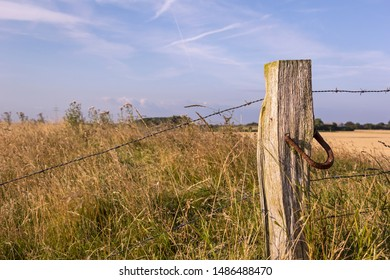 View of a detail of an old pasture fence in the marshland of the North Sea, Germany.