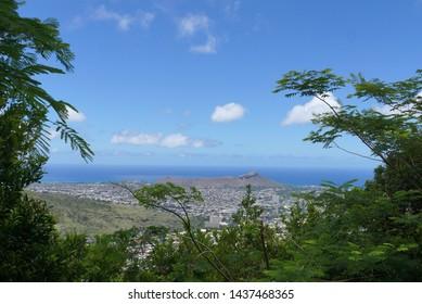 View of Diamondhead, Kapahulu, Kahala, Pacific ocean through the trees on Oahu, Hawaii. June 2016.