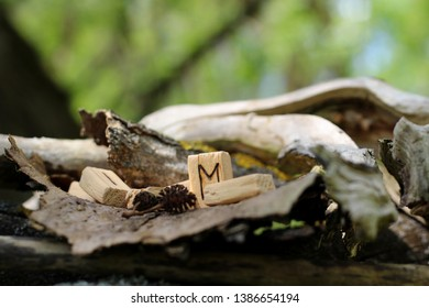 view directly on the rune Eyvaz which stands among other runes. The concept of mysticism, magic and prediction of the future