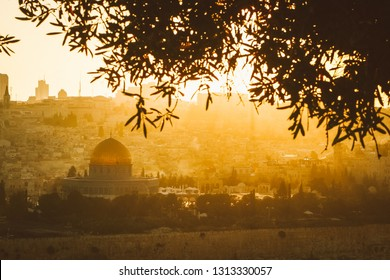 a view of the dome of the rock with Olive trees and the walls of Jerusalem, Al Aqsa, Palestine