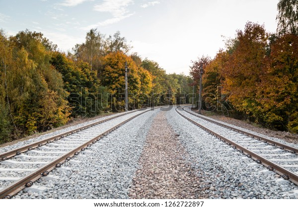 view at double rail track, which is turning left thru autumn forest