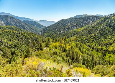 The view down Big Bear Creek Valley in the San Bernardino National Forest from Butler Peak