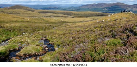 View down mountain stream, Allt Coire an t-Sneachda, to Rothemurchus Forest Cairngorm Mountains, Scotland