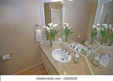 View of downstairs bathroom in luxury house