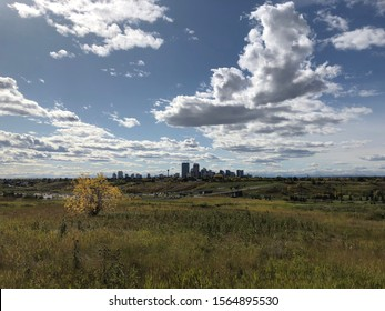 A View of Downtown Calgary From an Urban Park