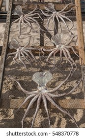 View of drying octupus in the beach of Nazare city, Portugal.