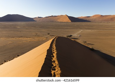 View from the dune 45 in the Namib Desert, Sossusvlei, in the Namib-Naukluft National Park of Namibia