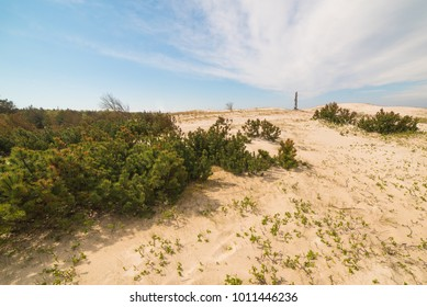 View of the dunes in Nida, Neringa, Lithuania. A popular destination in Europe in Lithuania. The huge dunes covering the end of the Curonian Spit are included in the UNESCO world heritage